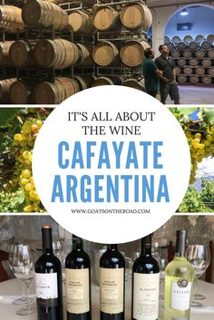 Cafayate, Argentina: Its All About the Wine | Winery Tours Argentina | Backpacking South America | Argentina Travel Tips | What To See & Do In Argentina