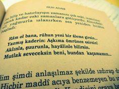 Hüseyin Nihal Atsız