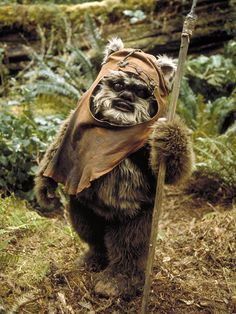 Wicket W. Warrick was a male Ewok scout and warrior on the forest moon of Endor. Wicket also played an instrumental role in helping the Rebel Alliance defeat the Galactic Empire during the Battle of Endor. When Wicket was still a young warrior, the Galactic Empire ruled by Emperor Sheev Palpatine landed on Endor to construct a shield generator to protect their second Death Star. Despite the disparity in technology and firepower between the Ewoks and the Imperial forces, Wicket devised…