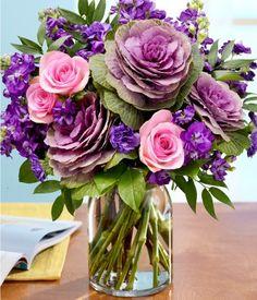 purple flower cabbage