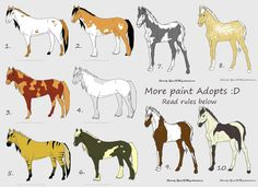 Closed- Free Paint Horse adoptables! by ~Filly8 on deviantART