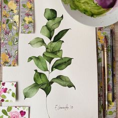 223 Likes, 6 Comments - It's me Emi Drawing Skills, Greenery, Workshop, Drawings, Illustration, Instagram Posts, Students, Big, Design