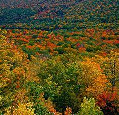 Cape Breton, Nova Scotia - fall colours are amazing Places To Travel, Places To Visit, Atlantic Canada, O Canada, Cape Breton, World Pictures, Prince Edward Island, New Brunswick, Nova Scotia