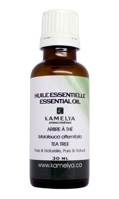 L'huile essentielle d'arbre à thé (Melaleuca alternifolia)  est tout simplement un incontournable pour lutter contre les infections de tous ordres. #aromatherapie #arbreathe #huileessentielle #desinfectant #rhume #sinusites #acne #eczema #sante #otites #varices #puces #poux #varices #puces #pellicules #soins #teatree