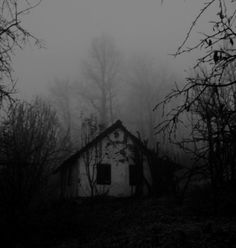 Its Blair Witch creepy but it draws me in...