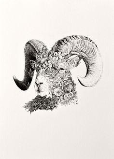 Aries, by Nathan Ferlazzo Widder Tattoo, Capricorn Tattoo, Aries Zodiac Tattoos, World Animal Protection, Dark Art Drawings, Animal Sketches, Cover Tattoo, Ink Illustrations, Art Challenge