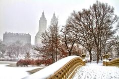 Bow Bridge, Central Park ... New York City in winter ... on the island of Manhattan