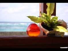 """Background Music""""Happy time""""Japan Relaxing Music, ,Guitar Instrumental Music. - YouTube"""
