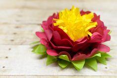 flor-tricolor-vía-AHDO15
