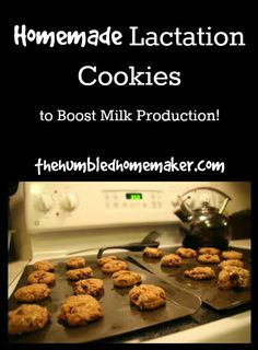 a recipe for homemade lactation cookies