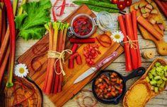 Ревень на зиму – заготовки: лучшие рецепты. Варенье из ревеня на зиму, компоты, повидло, джем, соус, начинка для пирога, желе, заморозка