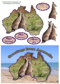 - A card with a difference, this greetings from Australia card is just that, send across the sea for Birthday, Christmas, or t. 3d Sheets, Australia Living, 3d Paper, Digital Stamps, Paper Piecing, Decoupage, Birthday Cards, Christmas Cards, Card Making