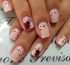 Correo - carosant14@hotmail.com Shellac Nails, Manicure And Pedicure, Acrylic Nails, Fingernail Designs, Nail Art Designs, Toe Nail Art, Toe Nails, Ladybug Nails, Flower Nail Art