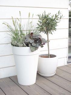 Syysistutukset ja terassin syksyisempi ilme Flower Pots, Flowers, Outdoor Gardens, Outdoor Living, Planter Pots, Home And Garden, Yard Ideas, Blog, House