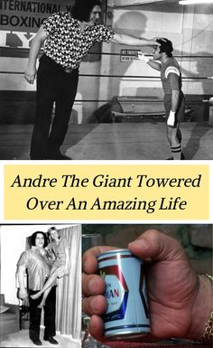Andre the Giant is one of the greatest wrestlers of all-time. A global sports star before the term applied to his profession, the living mountain left a legenda Wwe Lucha, Andre The Giant, Vince Mcmahon, Tall People, Wrestling Superstars, Big Big, Sports Stars, Tall Guys, Professional Wrestling