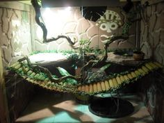 Would be cool for water dragons or iguanas Chinese Water Dragon, Deadly Plants, Bearded Dragon Cage, Reptile Habitat, Green Iguana, Animal Room, Pet Cage, Reptile Enclosure, Pet Store