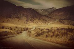 South by cally whitham, via Behance    cinematic photography