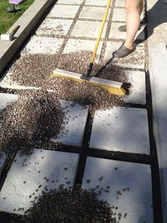 Create an inexpensive patio using large pavers and gravel.