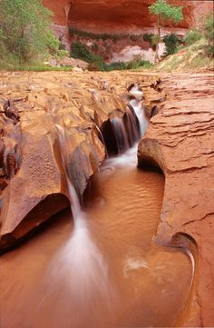 ✮ Eroded Coyote Gulch stream bed in the Escalante Canyons area of Glen Canyon National Recreation Area in southern Utah