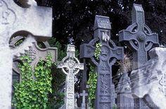 Celtic crosses, grave stones, grave art, Glasnevin cemetery, Dublin, Ireland (1848-88830 / 1133377 © imagebroker.net)