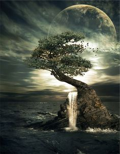 Aged Wisdom, fantasy photo, tree waterfall and huge glowing moon. Beautiful Moon, Beautiful World, Beautiful Places, Beautiful Pictures, Image Zen, Foto Picture, Shoot The Moon, Moon Pictures, Night Skies