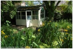 Pub Shed At the bottom of the garden - planning a micro brewery soon! #HomeBrew #ShedoftheYear