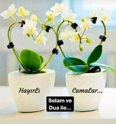 Planter Pots, Allah, Turkey, God, Allah Islam, Plant Pots