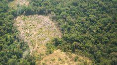 Land grabbing, crimine contro l'umanità sotto giurisdizione CPI