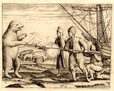 Polar bear, Gerrit de Veer - Age of Discovery - Wikipedia, the free encyclopedia The Castaway, Age Of Discovery, Nova, 16th Century, Polar Bear, Arctic, Renaissance, Amsterdam, Beast
