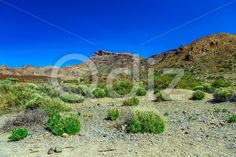 Qdiz Stock Photos Mountains landscape on Tenerife island,  #blue #Canary #day #island #landmark #landscape #mountain #national #nature #park #rock #sky #Spain #spring #summer #Teide #Tenerife #Travel #view