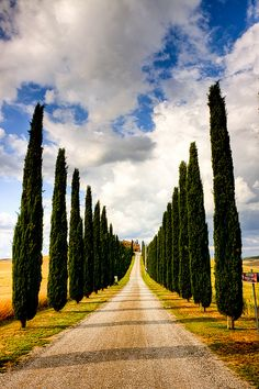 Prospettiva by efilpera, Toscana, Italy via Flickr (CC BY-NC-ND 2.0)