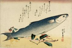 Grey Mullet (Bora) and Curnelia (Tsubaki), from the series A Shoal of Fishes (Uo-zukushi) | Harvard Art Museums