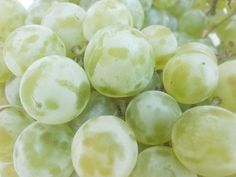 What are Marquis Grapes? - Eat Like No One Else Wine Country Gift Baskets, Wine Case, Growing Grapes, Green Grapes, Cheap Wine, Farmers Market, Seeds, Fruit, Eat