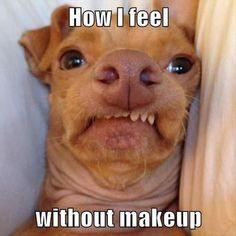 I haven't been wearing makeup to work to give my face a breather and this is really how I feel!