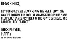 This brought tears to my eyes... Sirius was always my favourite ... well, my favourite adult at least...