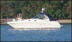 Nice day boating Sea Ray 340SDA