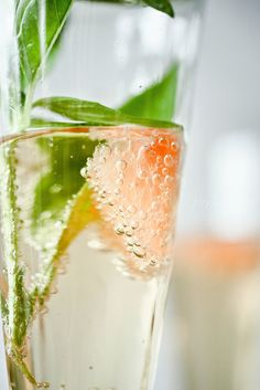 Ginger Basil Grapefruit #Spritzer #beverage