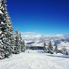Pure white winter in Beaver Creek, CO. Photo courtesy of forkandroad on Instagram.
