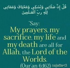 Only Allah (swt) Allah Quotes, Muslim Quotes, Quran Quotes, Islamic Quotes, Words Quotes, Sayings, Islamic Dua, Qoutes, Noble Quran