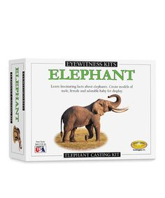 Take a look at this Elephant Model Kit by Eye Witness on #zulily today!
