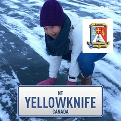 Yellowknife Canada, Surfers, Crochet Hats, Couch, Surf Girls, Sofa, Couches, Sofas, Sofa Beds