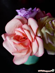 Learn to make gorgeous roses from coffee filters & watercolor paint. Free template and video!