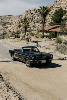 Joshua Tree - A Weekend in the Desert with Faithfull | Song of Style