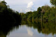 Black River, Portland Bight, Jamaica.
