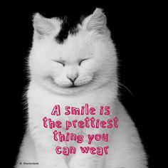 A #smile is the prettiest thing you can wear.