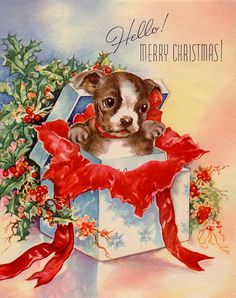 Vintage Christmas puppy popping out of a gift box.