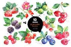 Watercolor Berries Vector Set by Elena Pimonova on Creative Market