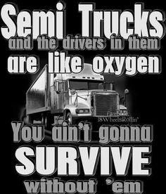 Big Rig Trucks, Semi Trucks, Truck Driver Wife, Truck Drivers, Job Humor, Funny Humor, Trucker Quotes, Truck Memes, Monster Truck Birthday