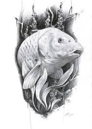 """Résultat de recherche d'images pour """"carp pencil drawing"""""""
