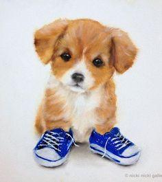 perros cachorros adorables (7)